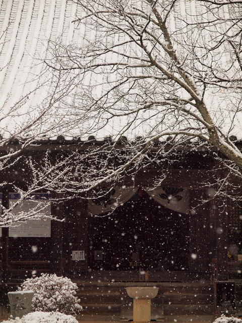 従二位 古都写真大納言 辻本 英明様  「雪の観音堂」