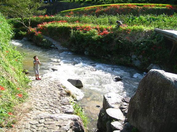 従三位 景観写真卿 熱川 英明様  「飛鳥川、石走の秋」