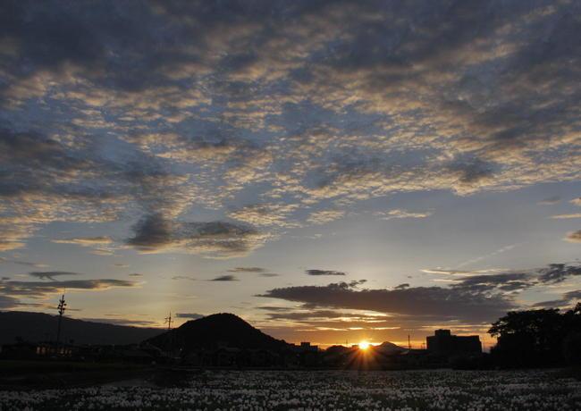 従三位 三山写真卿 山本 明子様 「畝傍山落陽」
