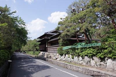 庭師により育まれる南禅寺界隈のアカマツ.jpg