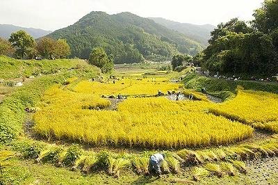 (17)奈良の文化的景観.jpg