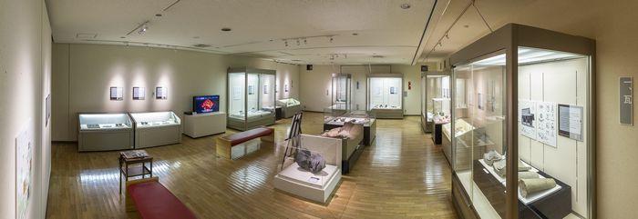 飛鳥資料館特別展の展示風景700.jpg