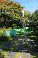 日本庭園史話