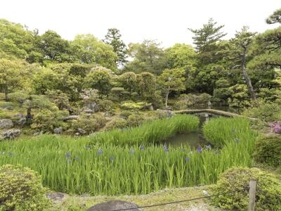 sahorou20200803_1.jpg
