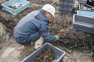 ①平城宮東方官衙のごみ穴の発掘風景.jpg